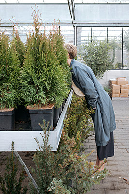 Woman hiding her head in plants in flower shop - p300m2171342 by Katharina und Ekaterina