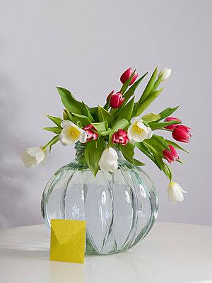 Tulpen - p2686944 von Clara Ritz