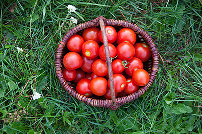 Tomate - p502m963459 von Tomas Adel
