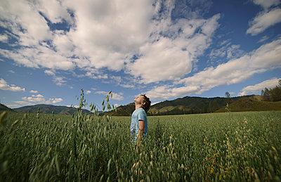 Caucasian boy standing in field looking up - p555m1219684 by Valeriya Tikhonova