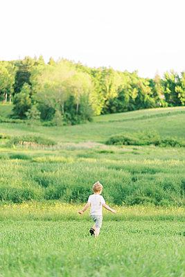 Little boy exploring a meadow. - p1166m2153894 by Cavan Images