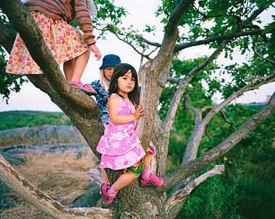 Little girls climbing in treetop - p972m1088583 by Trinidad Carrillo