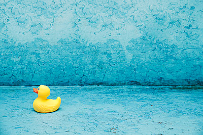 Empty pool - p1006m891385 by Danel
