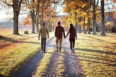 Rear view of friends walking on walkway - p1166m1231459 by Cavan Images