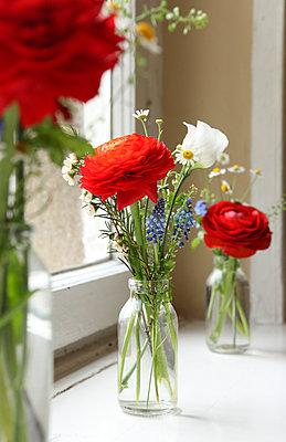 Blumen - p045m792940 von Jasmin Sander