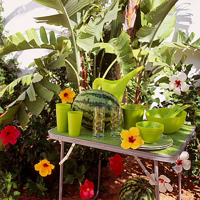 Green coloured plastic tableware on a foldaway table in a garden - p349m695251 by Emma Lee