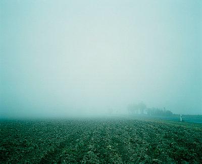 Agrarmystik - p3700041 von David Hartfiel