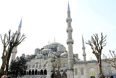 Blue mosque - p879m823149 by nico