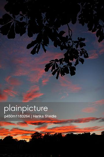 Sonnenuntergang   - p450m1183264 von Hanka Steidle