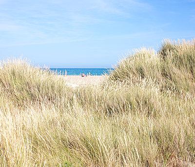 Blick zum Meer - p1113m1215051 von Colas Declercq