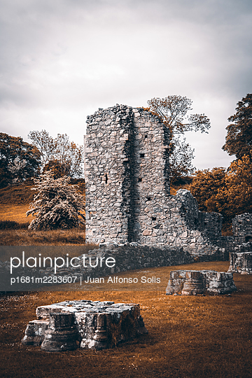 Ruined monastery, Inch abbey, Northern Ireland - p1681m2283607 by Juan Alfonso Solis