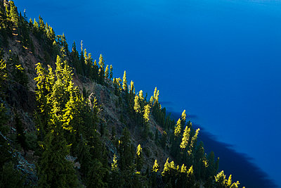 High angle view of trees growing on hill by Crater lake - p1166m1210547 by Cavan Images
