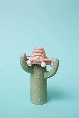 Cactus with sombrero - p237m1516692 by Thordis Rüggeberg