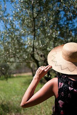 Woman in olive grove - p951m853294 by Caterina Sansone