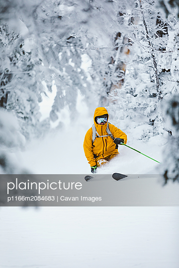 skier bro in yellow jacket makes powder turns in white forest - p1166m2084683 by Cavan Images