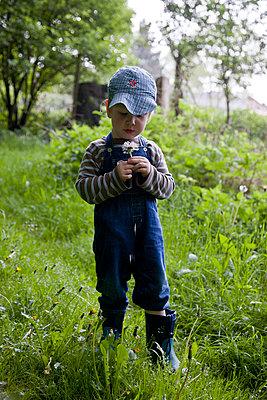 Kleiner Junge mit Pusteblume - p880m908045 von Claudia Below