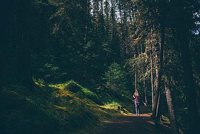 Hiker exploring forest, Johnston Canyon trail, Banff, Canada - p924m2078545 by Sara Monika