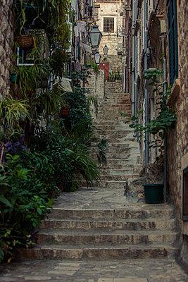 Anvient alley of  Dubrovnik, Dalmatia, Croatia - p1026m992006f by Romulic-Stojcic