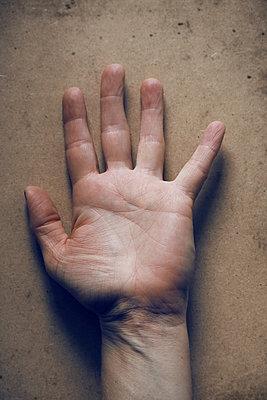 Female hand - p450m2015414 by Hanka Steidle