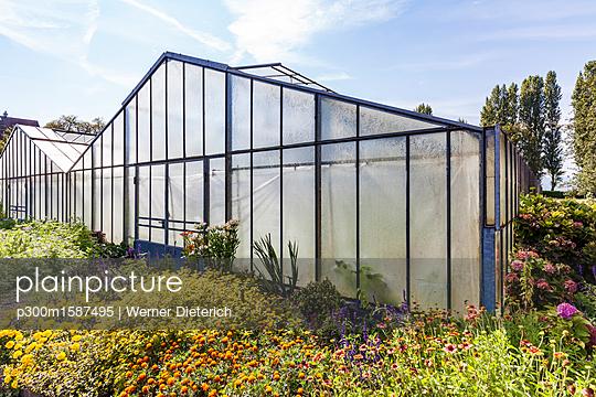 Germany, Constance district, Reichenau Island, Niederzell, greenhouse - p300m1587495 von Werner Dieterich