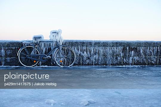 p429m1417675 von Jakob Helbig