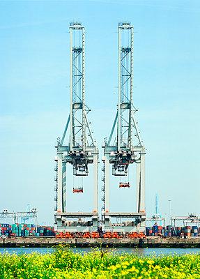 Container terminal maasvlakte - p1132m1071992 by Mischa Keijser