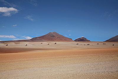 Rocas de Dalí in der Siloli-Wüste - p1038m1575383 von BlueHouseProject