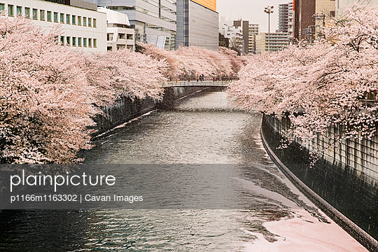 p1166m1163302 von Cavan Images