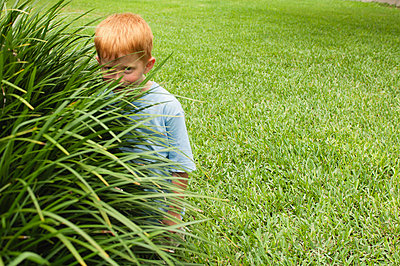 Boy hiding behind tall grass - p624m710985f by Michele Constantini