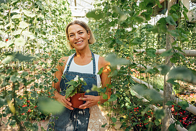 Smiling female farmer holding potted plant while standing in greenhouse - p300m2300542 by Vasily Pindyurin