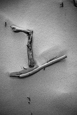 Stilleben im Sand - p305m1171494 von Dirk Morla