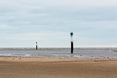 a beach at low tide - p1072m993426 by Francoise Hillemand