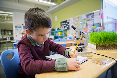 Elementary student taking notes in laboratory - p1192m1016836f by Hero Images