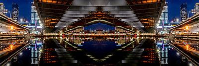 Zakim Bunker Hill Memoriam Bridge Boston - p401m2210322 by Frank Baquet
