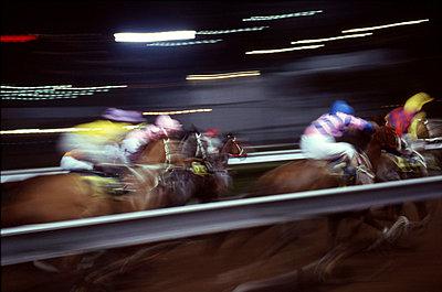 Beim Pferderennen - p6460027 von gio