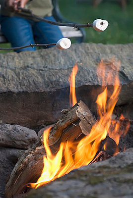 Roasting Marshmallows Over A Campfire; Vermont Usa - p442m839512 by Spyros Bourboulis