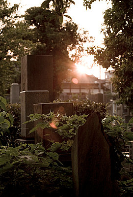 Graveyard with sunset - p7350046 by Thomas Prinz