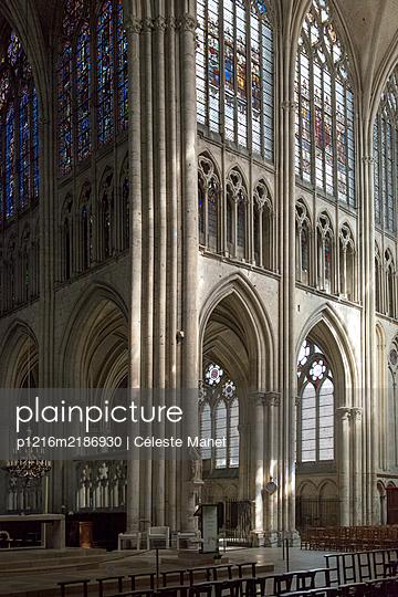 p1216m2186930 by Céleste Manet