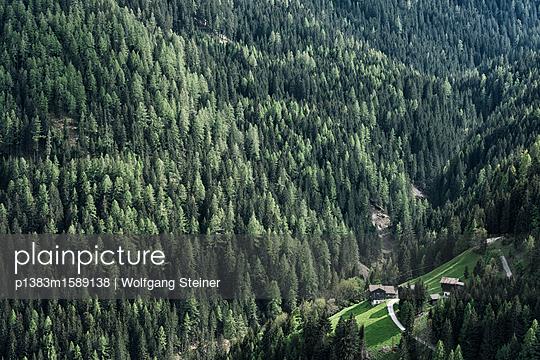 Alter Bauernhof in einer Waldlandschaft - p1383m1589138 von Wolfgang Steiner