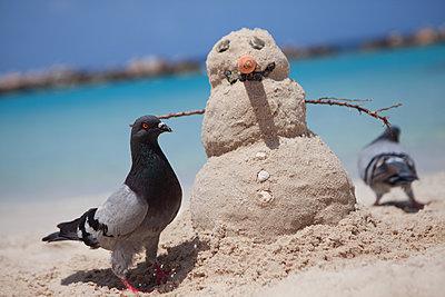 Zwei Tauben umkreisen Sand-Schneemann - p045m2014794 von Jasmin Sander