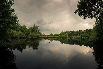 Pond with ducks - p1515m2182093 by Daniel K.B. Schmidt