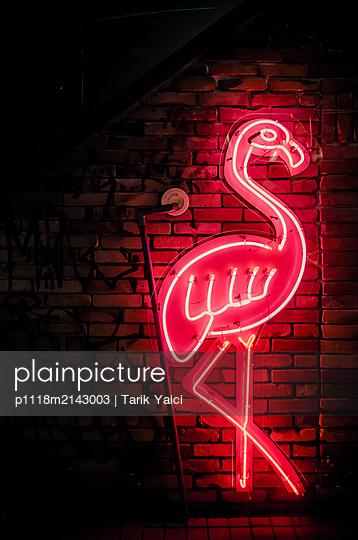 Neon sign, Flamingo - p1118m2143003 by Tarik Yaici