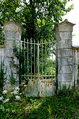 Garden gate - p248m710465 by BY