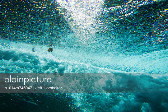 Underwater view seaweed in shore break wave  - p1014m745947 by Jeff Hornbaker
