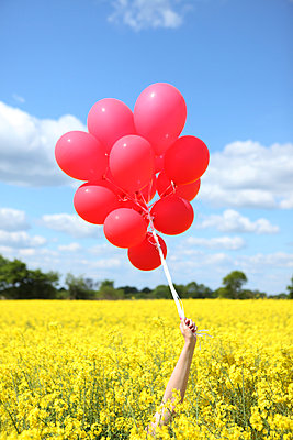 Red balloons - p045m931632 by Jasmin Sander