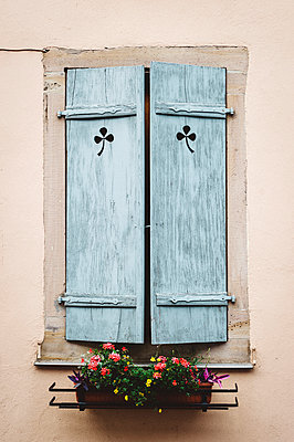Shutter and flowers - p1088m907732 by Martin Benner