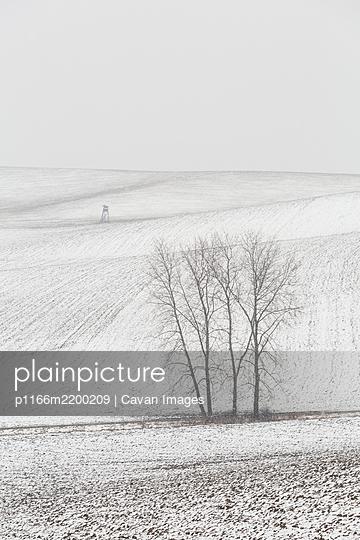 Turiec region, Slovakia. - p1166m2200209 by Cavan Images
