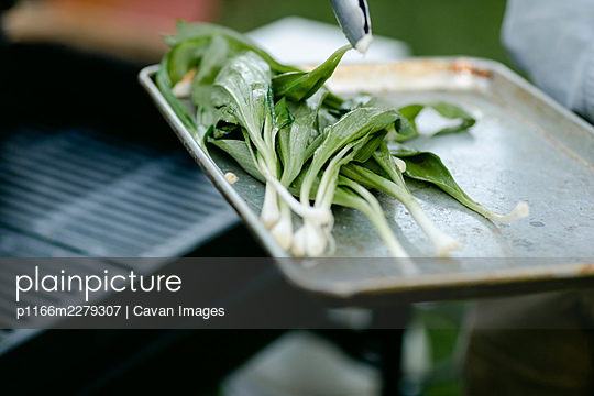 Close up of wild ramps on a tray being picked up by tongs - p1166m2279307 by Cavan Images