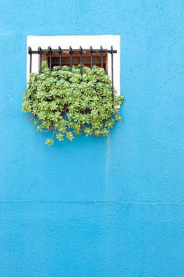 Italy;  Venice - p4510724 by Anja Weber-Decker