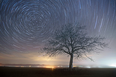 Star trails over a lonely tree - p300m1204665 by David Herraez Calzada